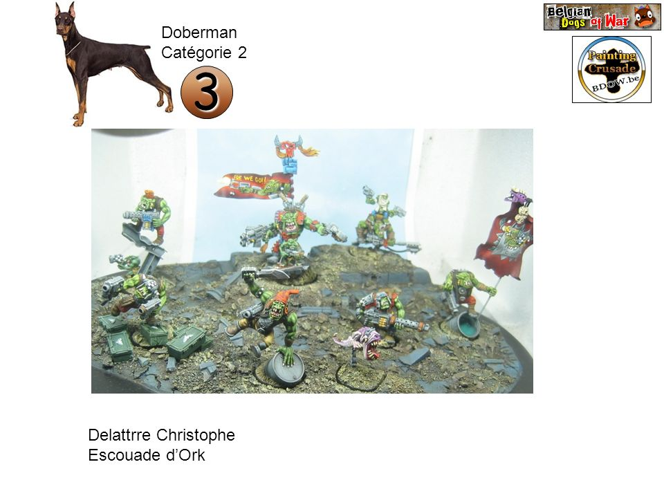 Doberman Catégorie 2 3 Delattrre Christophe Escouade d'Ork