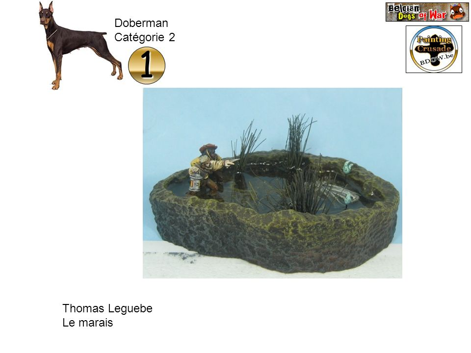 Doberman Catégorie 2 1 Thomas Leguebe Le marais
