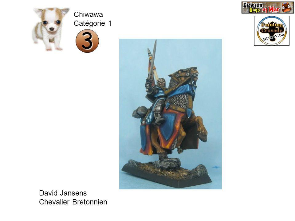 Chiwawa Catégorie 1 3 David Jansens Chevalier Bretonnien