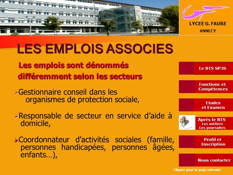 LES EMPLOIS ASSOCIES Les emplois sont dénommés différemment selon les secteurs. Gestionnaire conseil dans les.