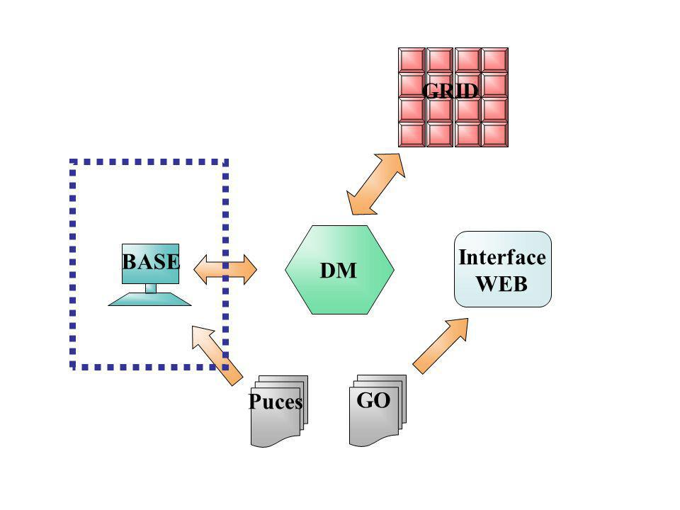 GRID DM Interface WEB BASE Puces GO