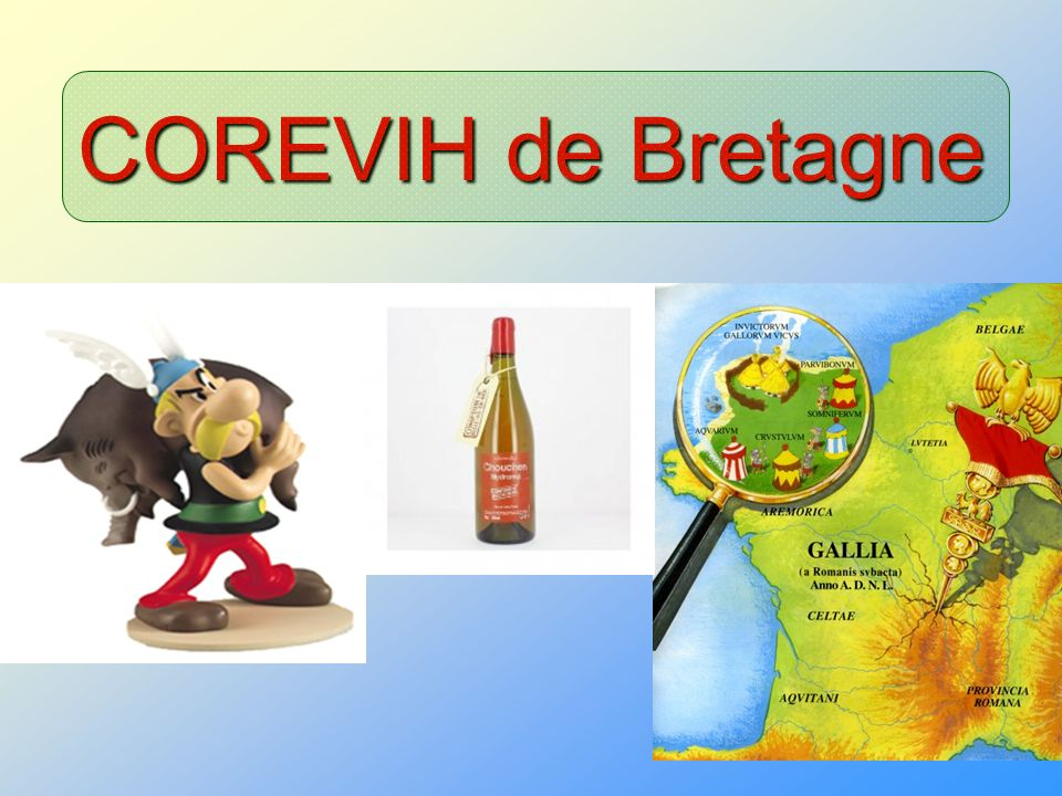 COREVIH de Bretagne