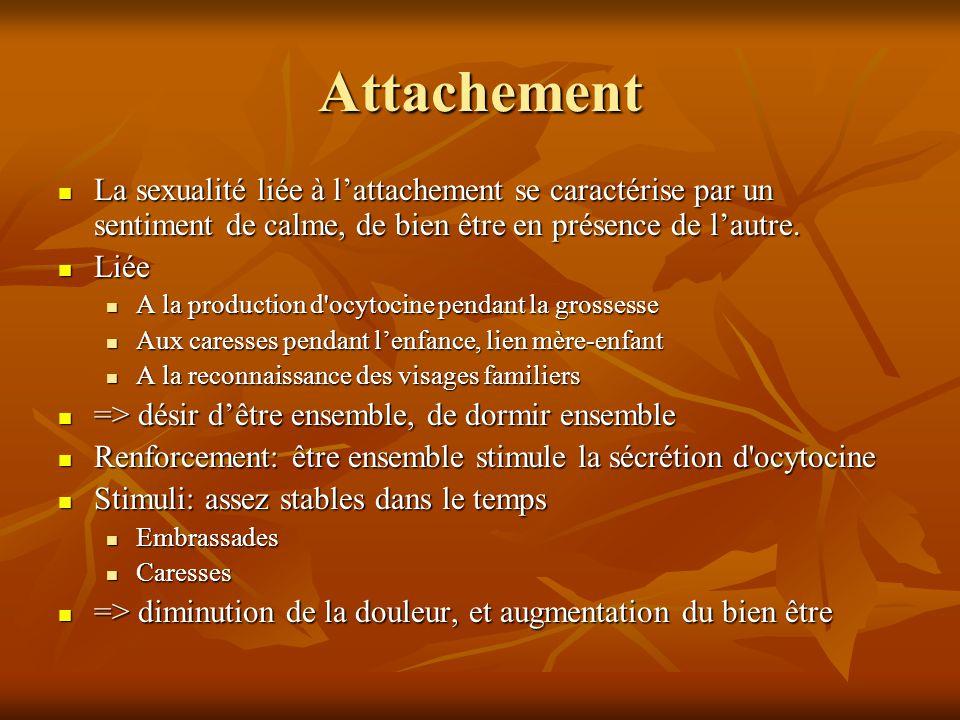 Attachement La sexualité liée à l'attachement se caractérise par un sentiment de calme, de bien être en présence de l'autre.