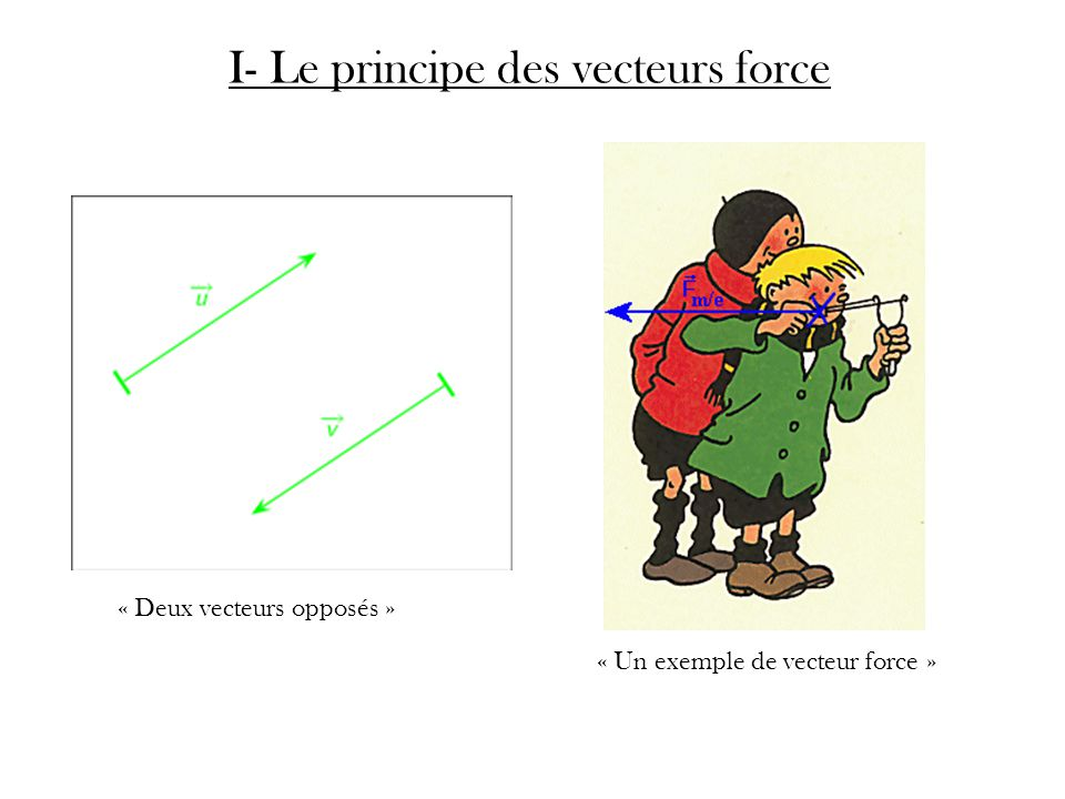 I- Le principe des vecteurs force