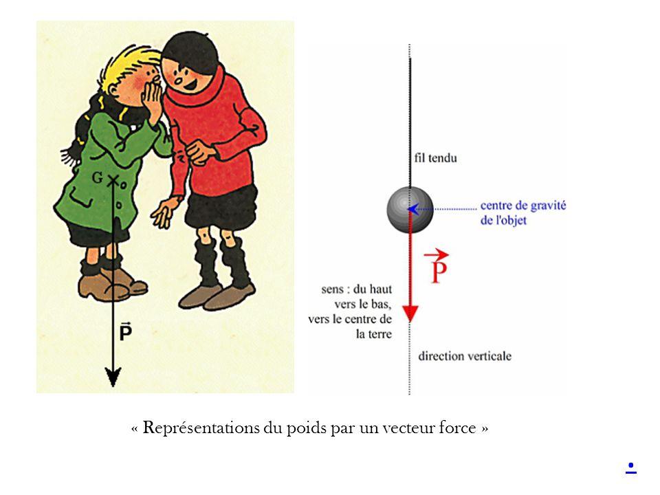 « Représentations du poids par un vecteur force »