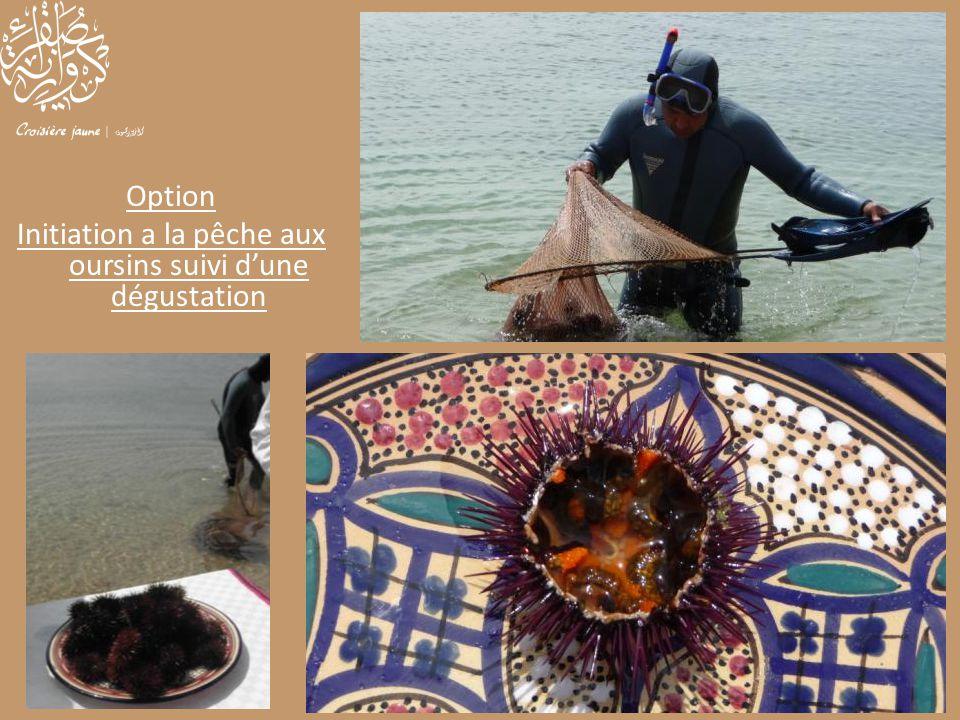 Initiation a la pêche aux oursins suivi d'une dégustation