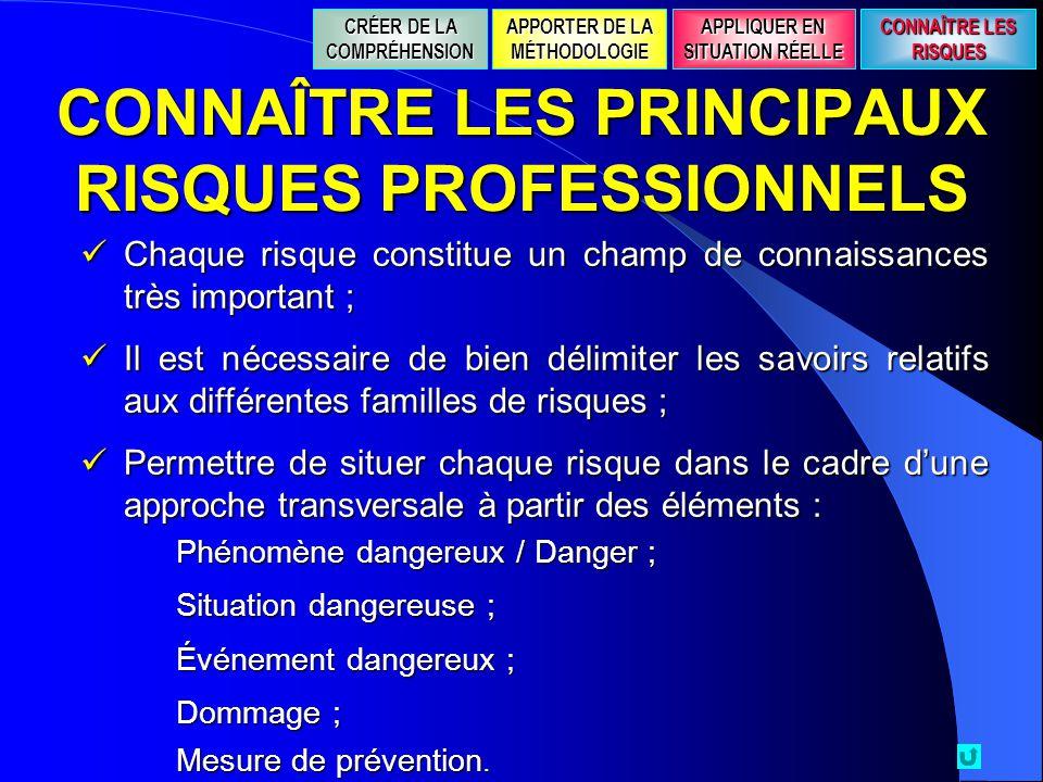 CONNAÎTRE LES PRINCIPAUX RISQUES PROFESSIONNELS