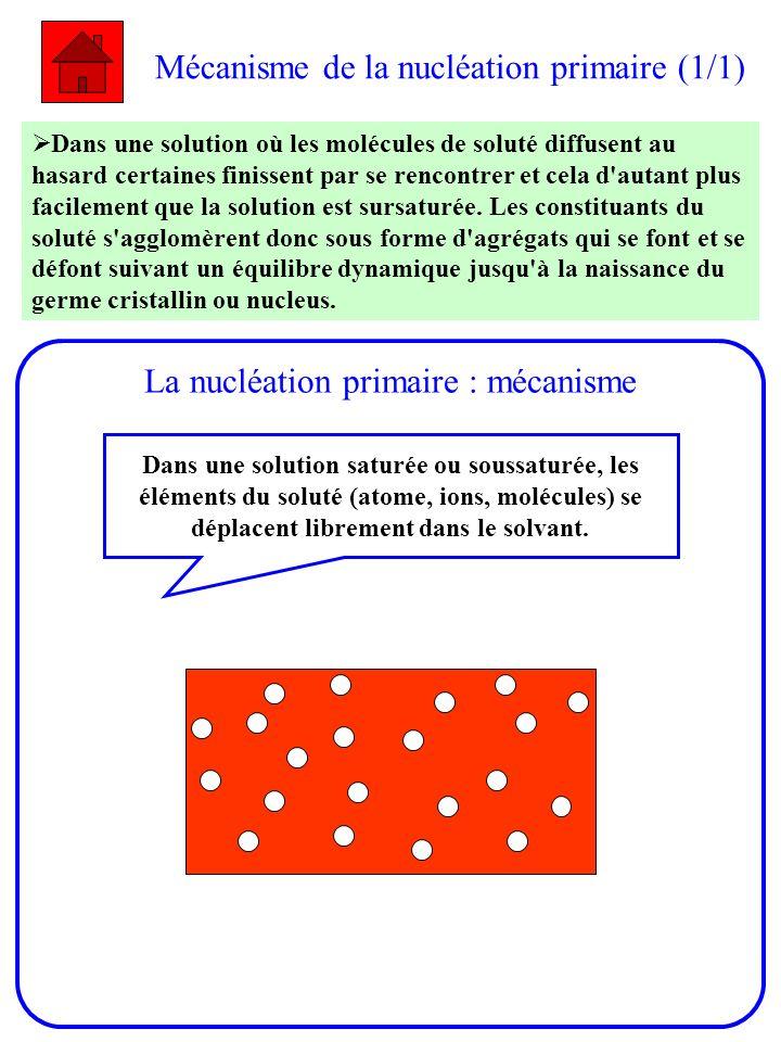 Mécanisme de la nucléation primaire (1/1)