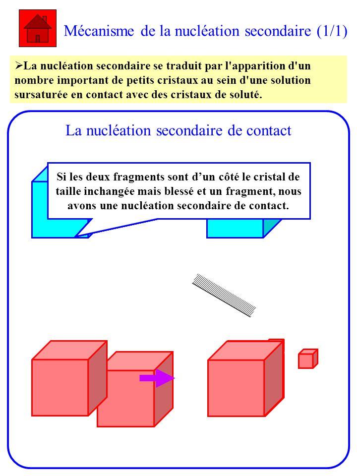 Mécanisme de la nucléation secondaire (1/1)
