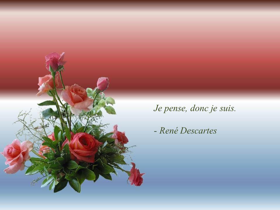 Je pense, donc je suis. - René Descartes