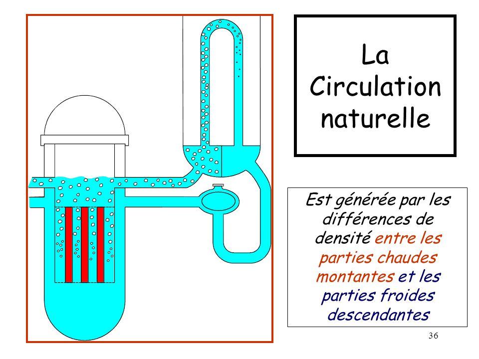 La Circulation naturelle