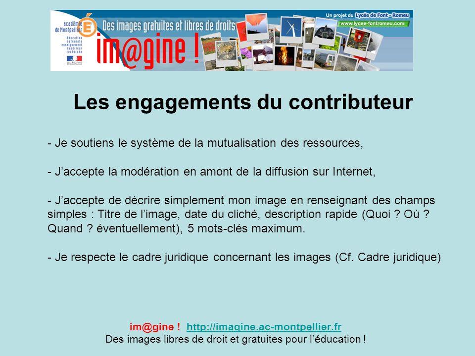 Les engagements du contributeur