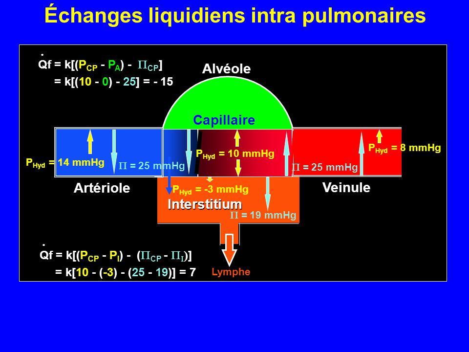 Échanges liquidiens intra pulmonaires