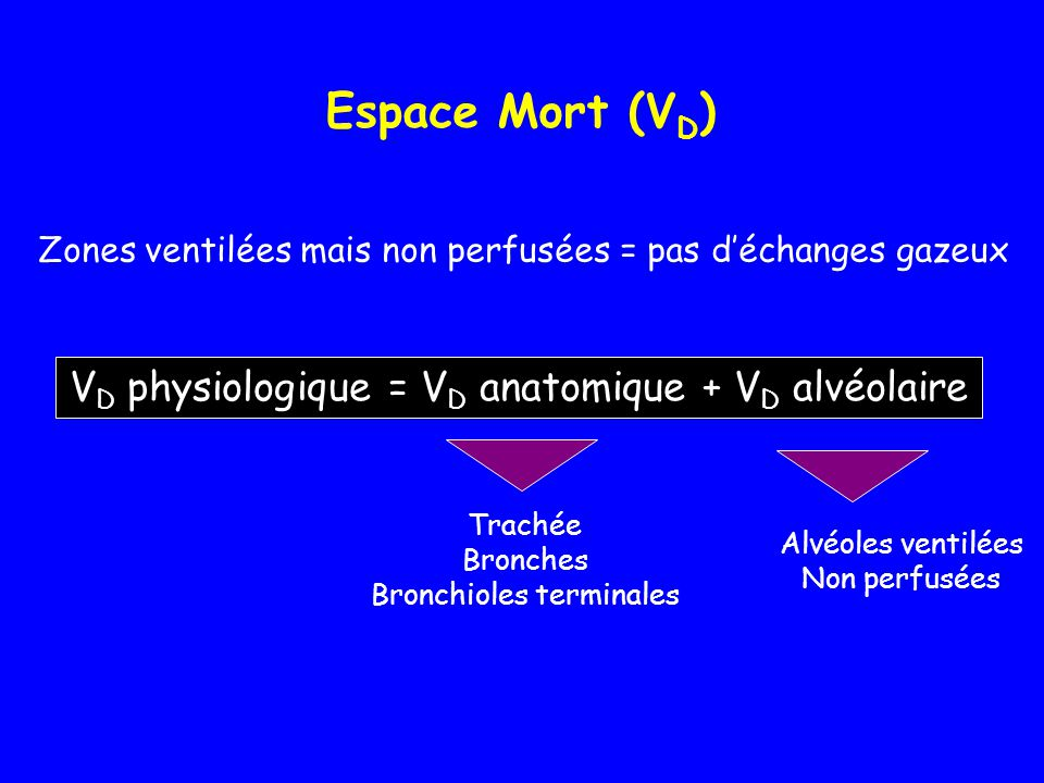 Espace Mort (VD) VD physiologique = VD anatomique + VD alvéolaire