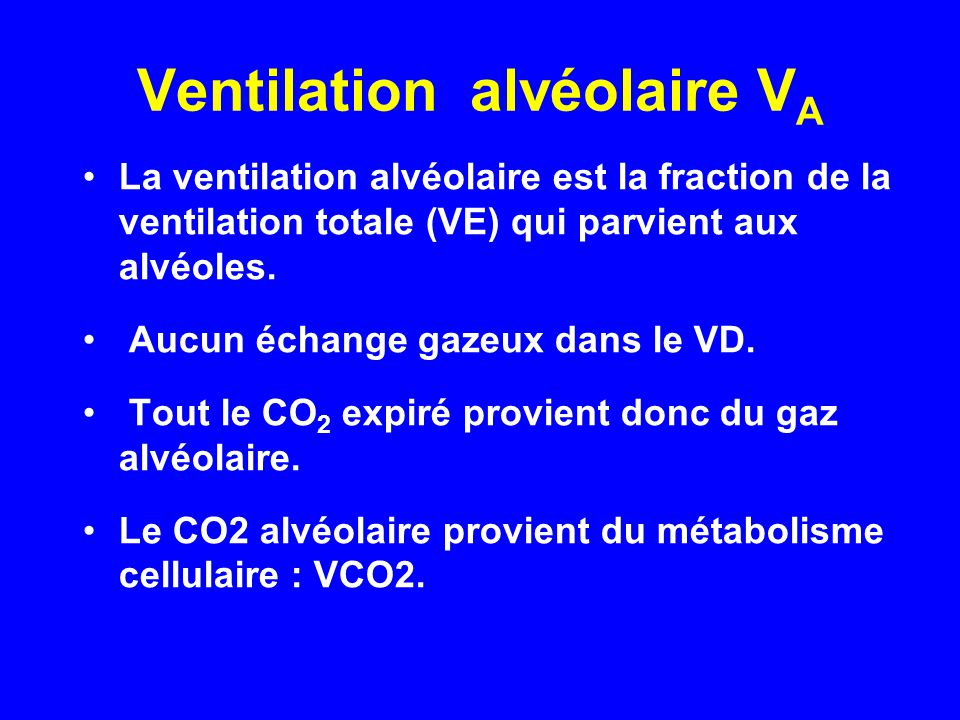 Ventilation alvéolaire VA