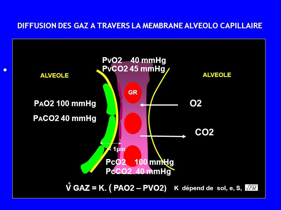 O2 CO2 DIFFUSION DES GAZ A TRAVERS LA MEMBRANE ALVEOLO CAPILLAIRE