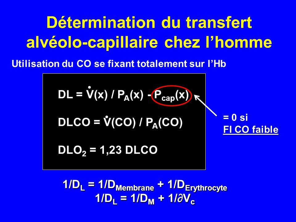 Détermination du transfert alvéolo-capillaire chez l'homme