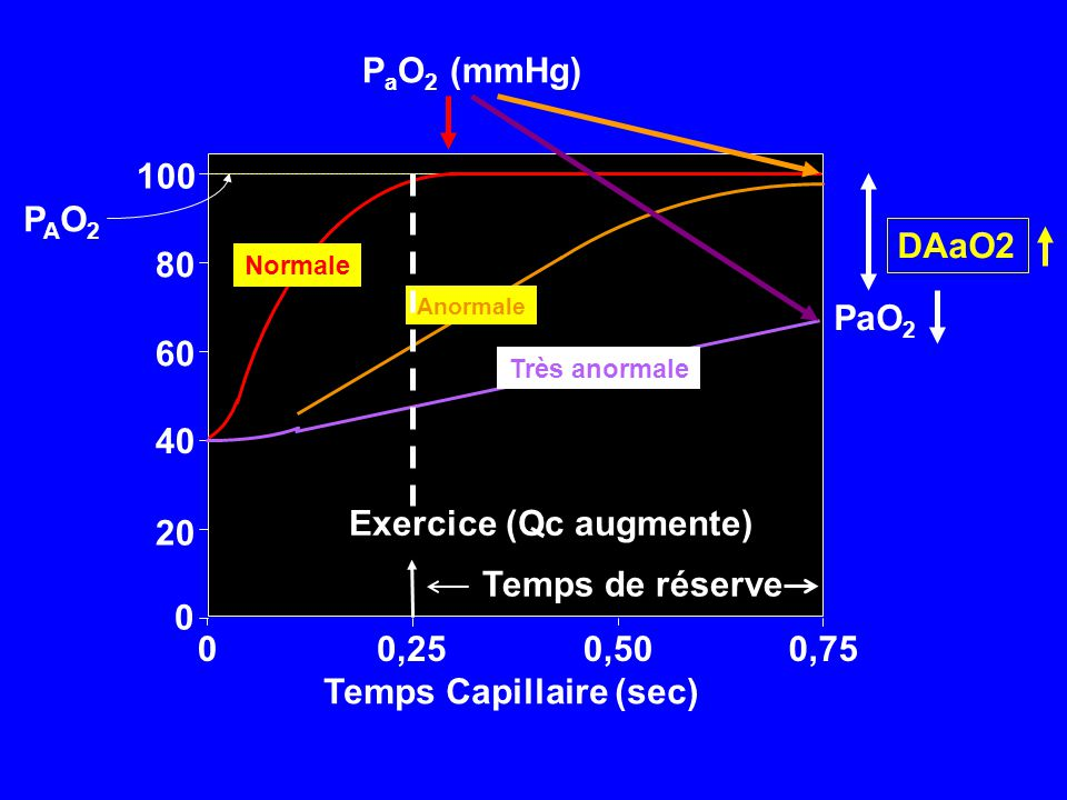 Temps Capillaire (sec) Exercice (Qc augmente)