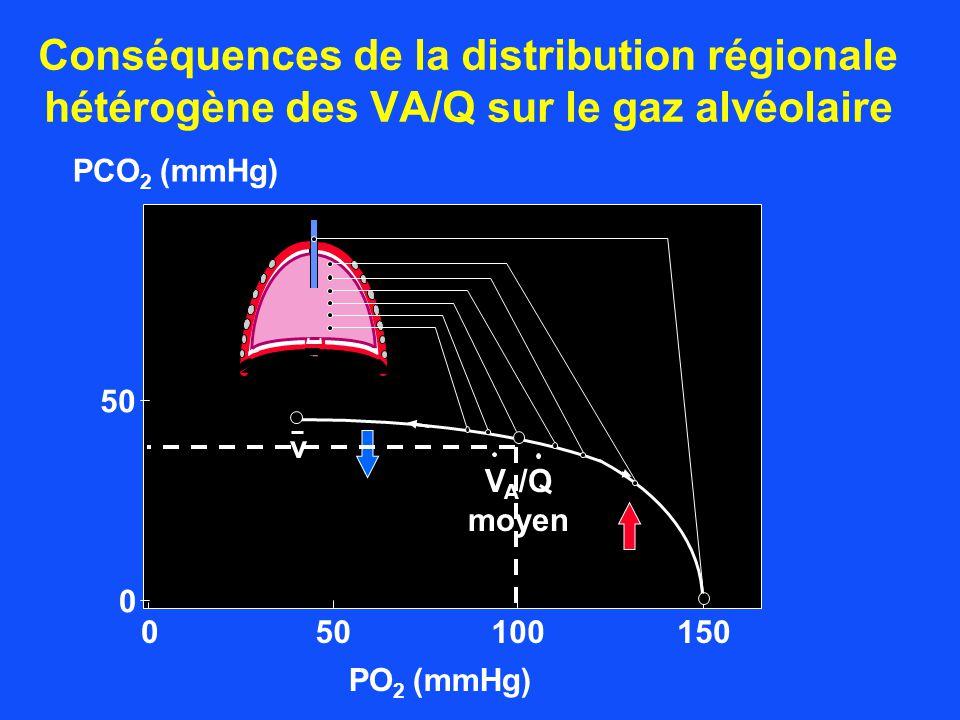 Conséquences de la distribution régionale hétérogène des VA/Q sur le gaz alvéolaire