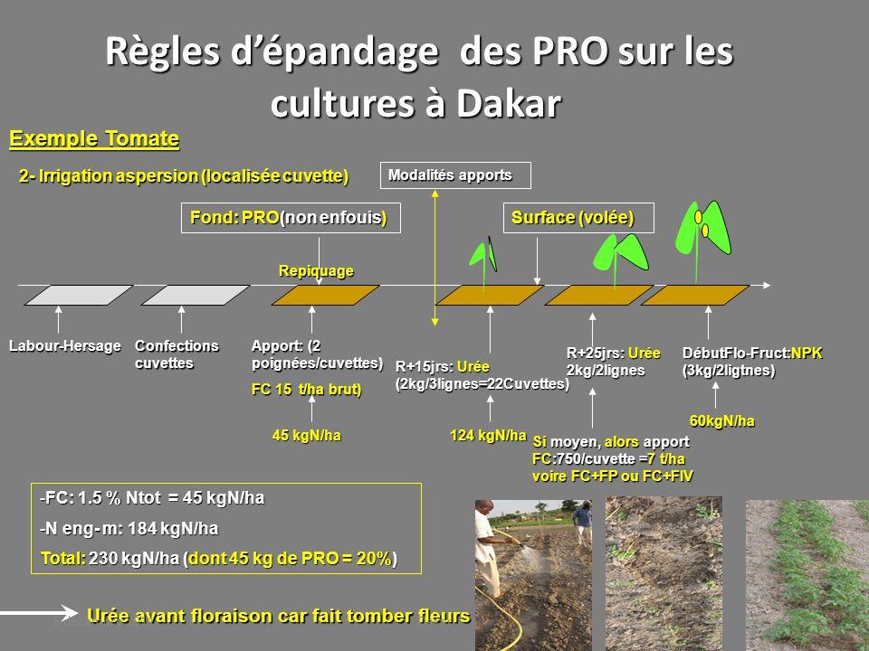 Règles d'épandage des PRO sur les cultures à Dakar