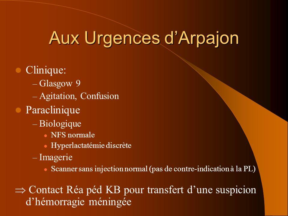 Aux Urgences d'Arpajon