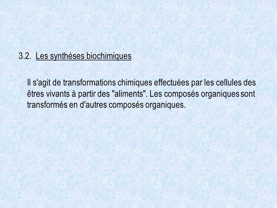 3.2. Les synthèses biochimiques