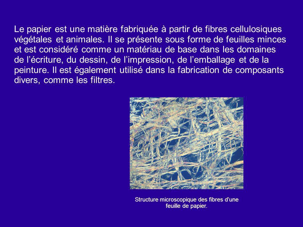 Structure microscopique des fibres d une feuille de papier.