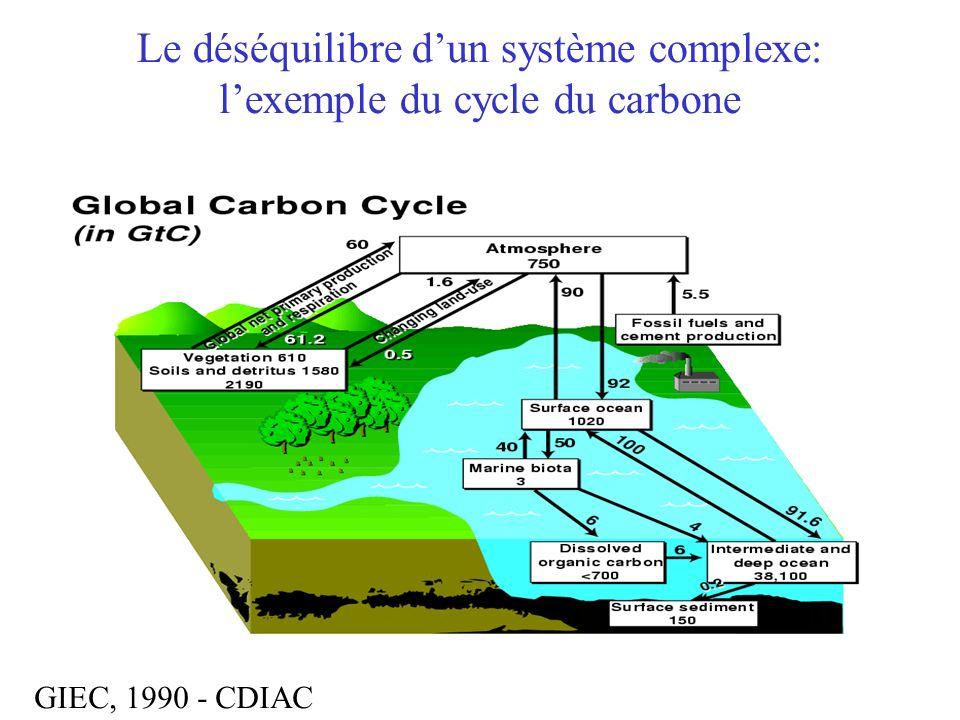 Le déséquilibre d'un système complexe: l'exemple du cycle du carbone