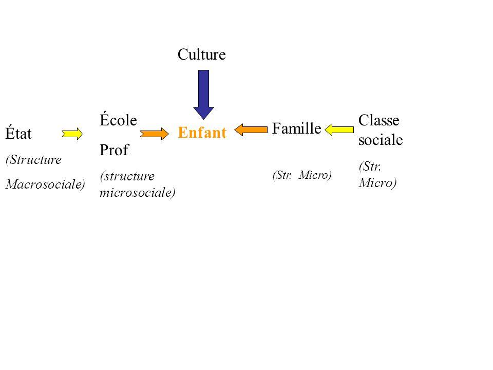 Culture État École Prof Classe sociale Famille Enfant (Structure