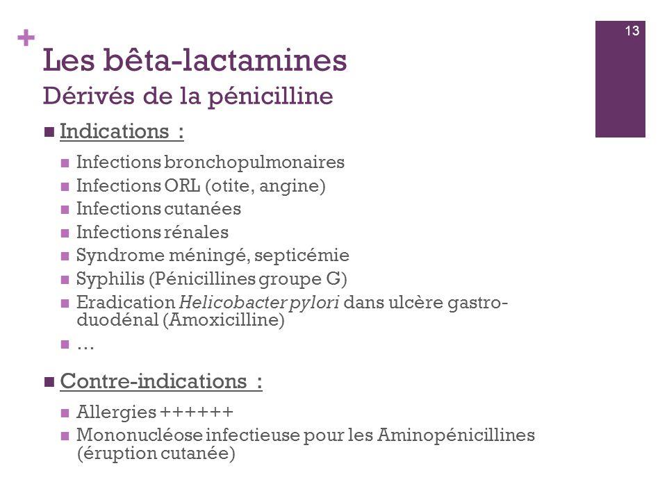 Les bêta-lactamines Dérivés de la pénicilline