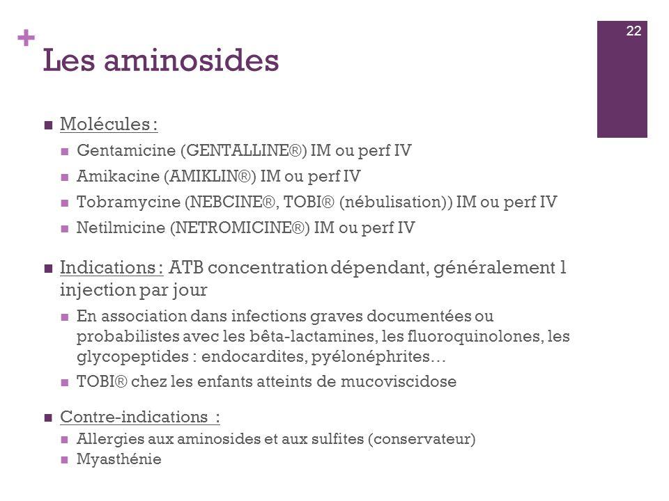 Les aminosides Molécules :