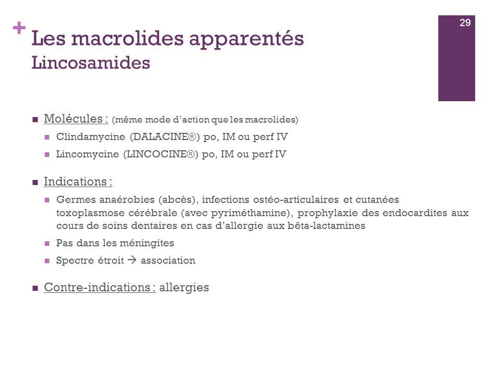 Les macrolides apparentés Lincosamides
