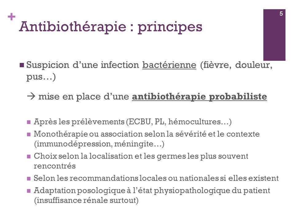 Antibiothérapie : principes
