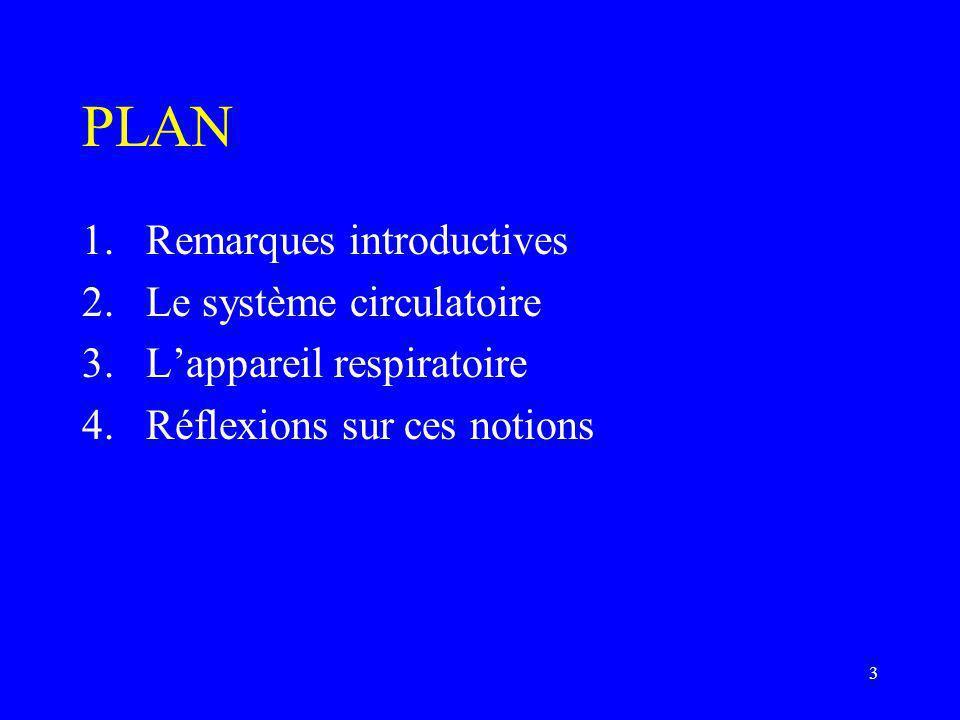 PLAN Remarques introductives Le système circulatoire