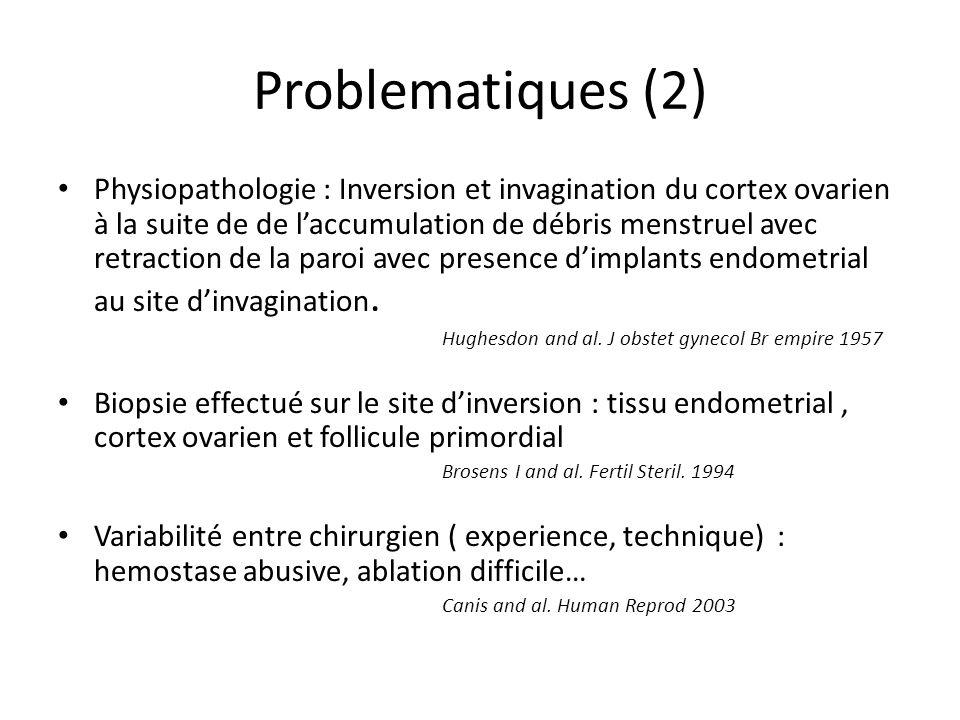 Problematiques (2)