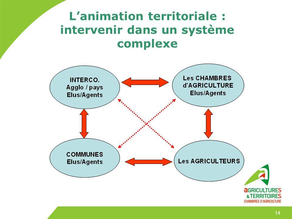 L'animation territoriale : intervenir dans un système complexe