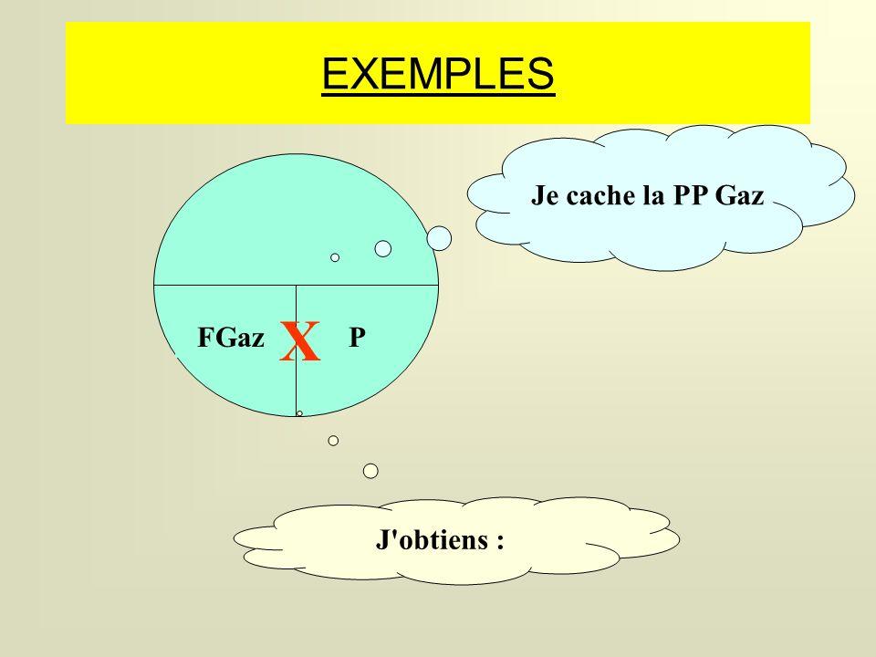 EXEMPLES Je cache la PP Gaz X FGaz P J obtiens :