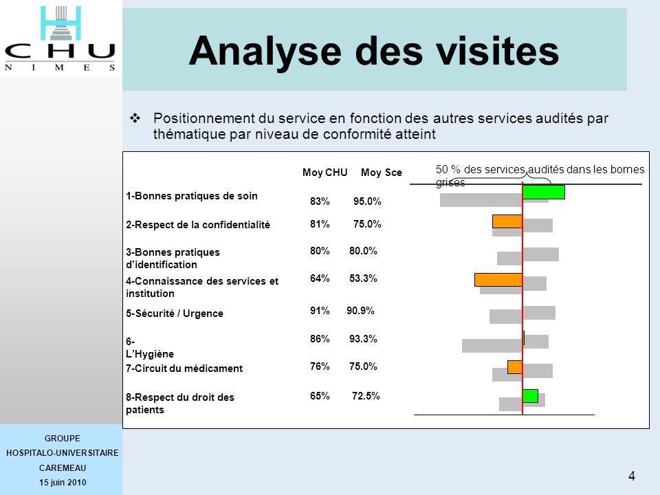 Analyse des visites Positionnement du service en fonction des autres services audités par thématique par niveau de conformité atteint.