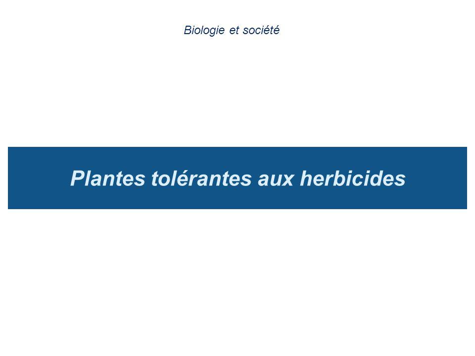 Plantes tolérantes aux herbicides