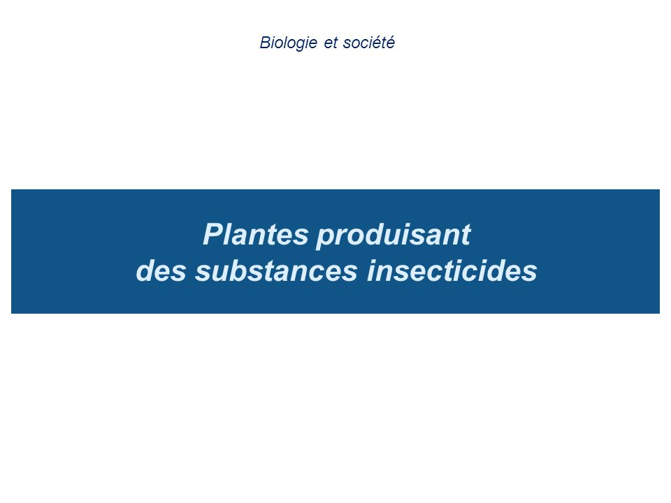Plantes produisant des substances insecticides