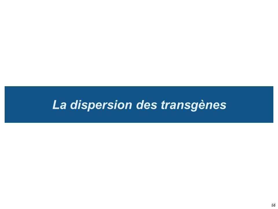 La dispersion des transgènes