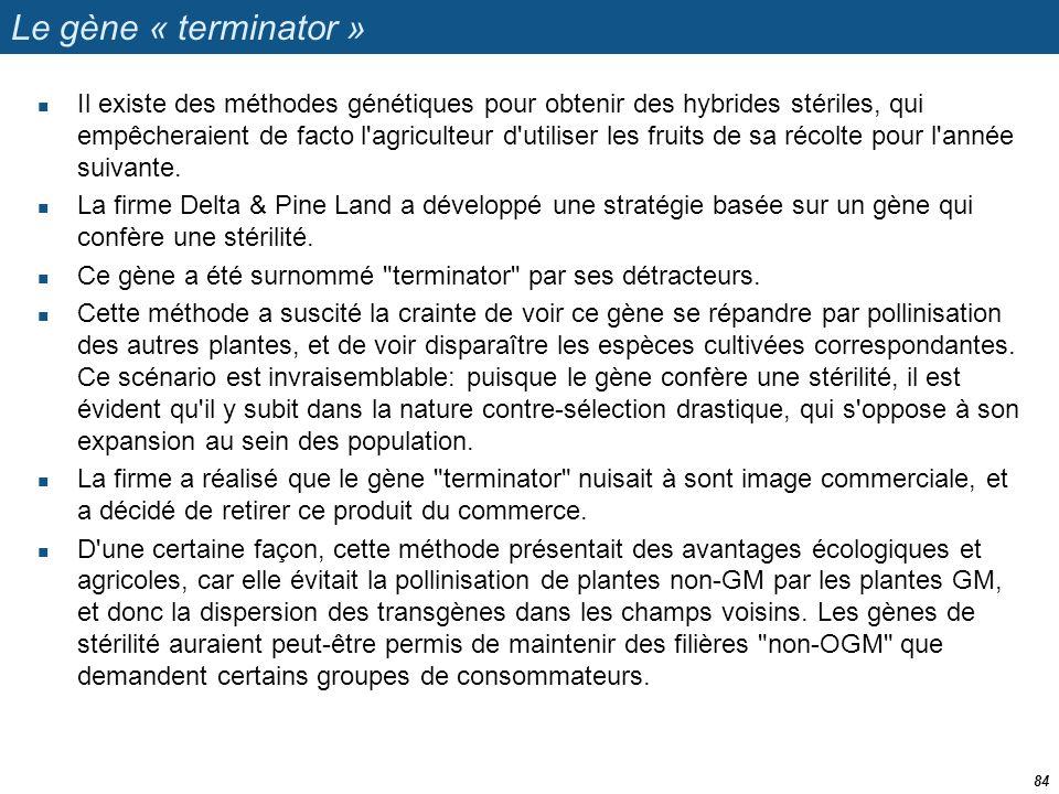 Le gène « terminator »
