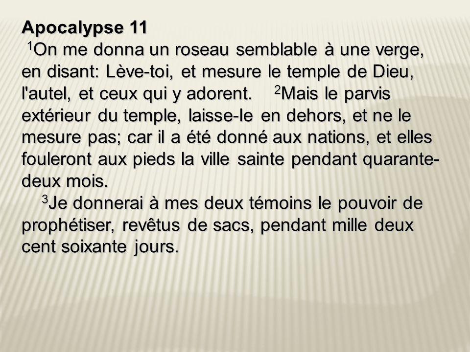 Apocalypse 11