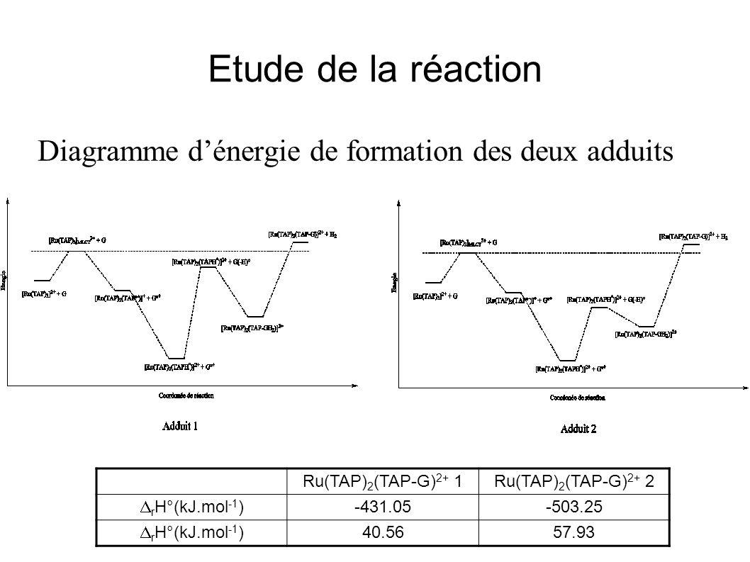 Etude de la réaction Diagramme d'énergie de formation des deux adduits