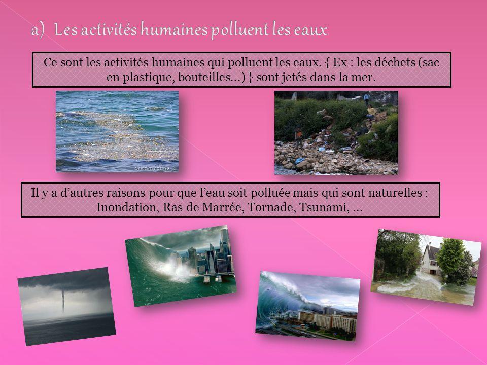 a) Les activités humaines polluent les eaux