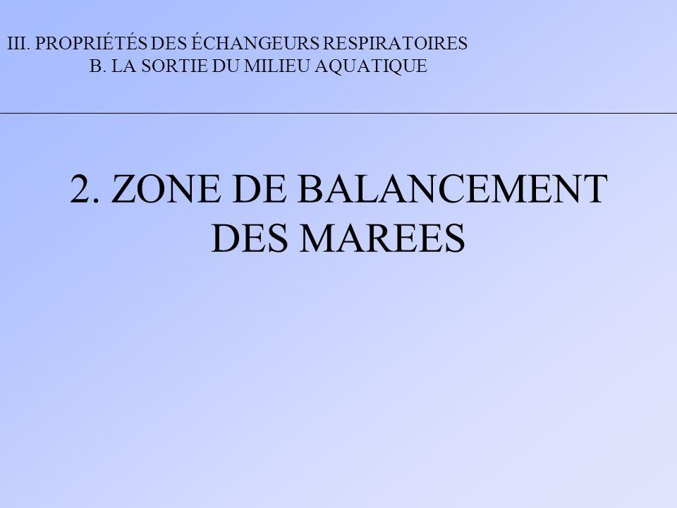 2. ZONE DE BALANCEMENT DES MAREES