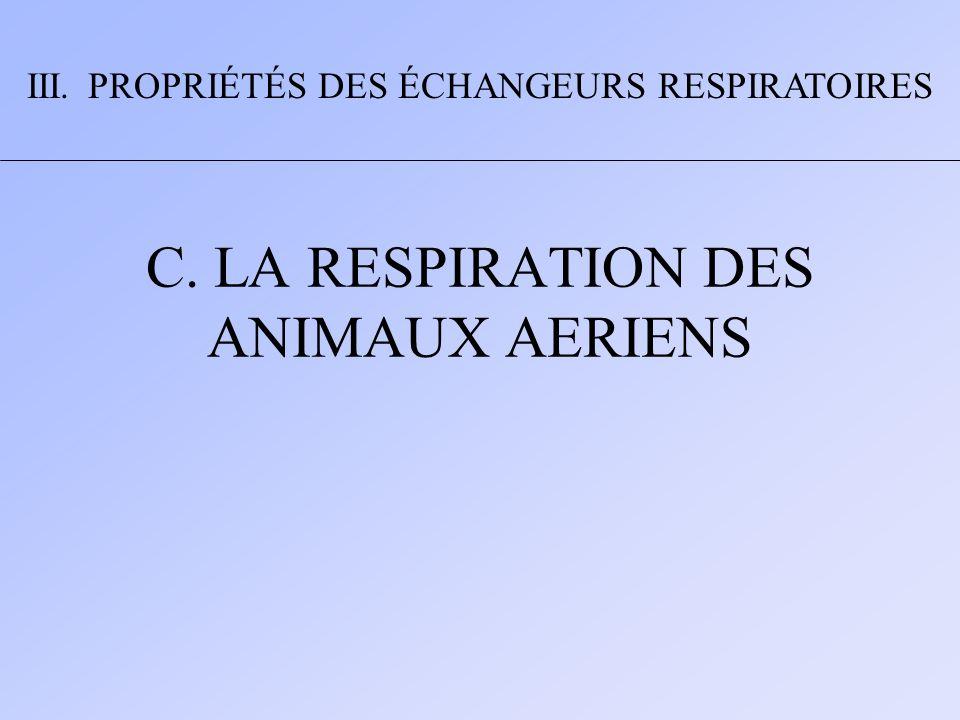 C. LA RESPIRATION DES ANIMAUX AERIENS