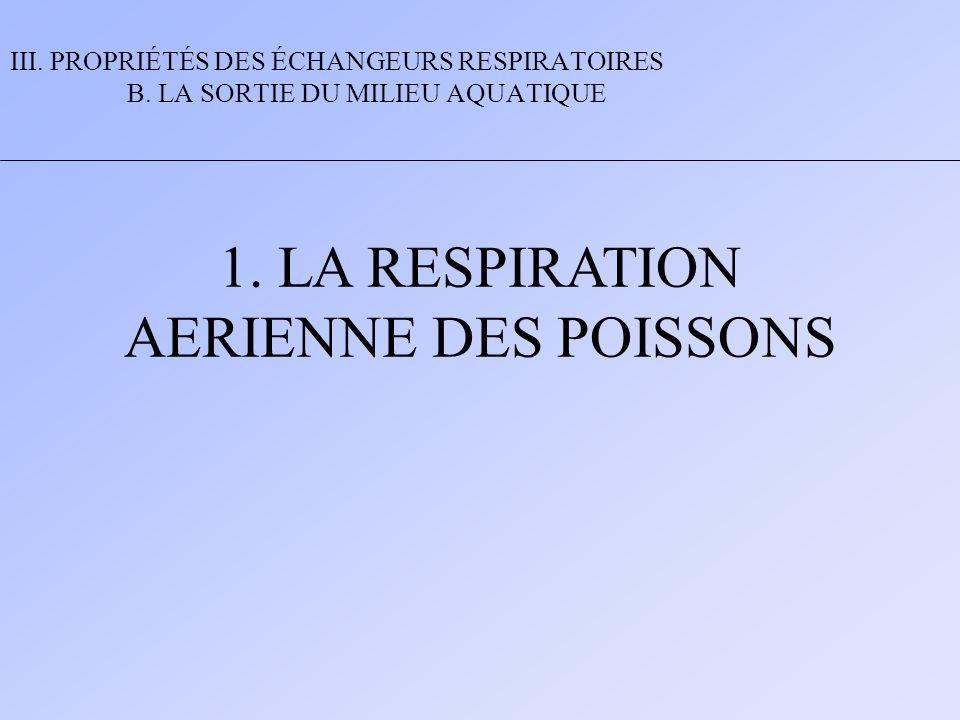 1. LA RESPIRATION AERIENNE DES POISSONS