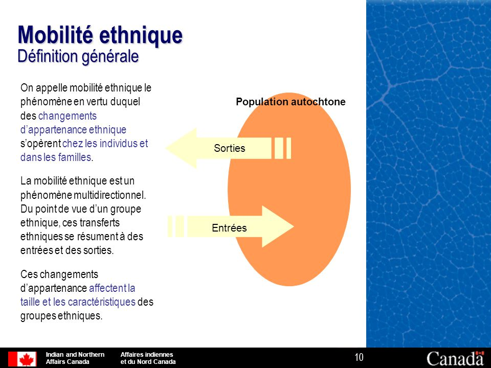 Mobilité ethnique Définition générale