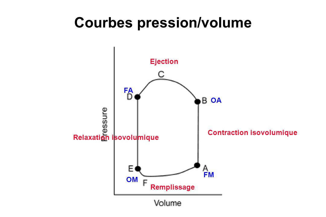 Courbes pression/volume